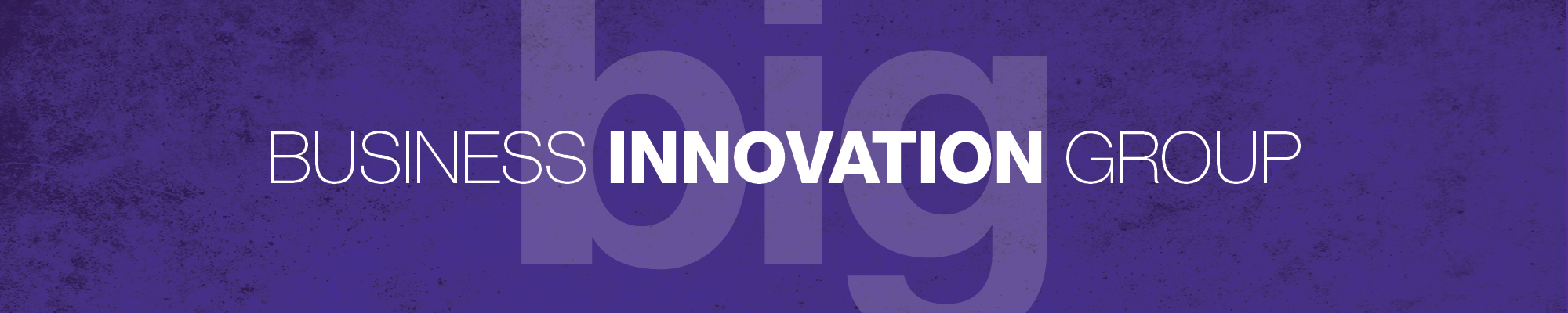 Business Innovation Group logo